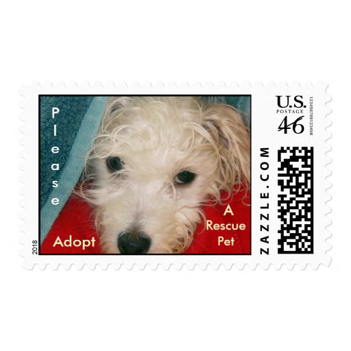 Rescue Pet Stamp