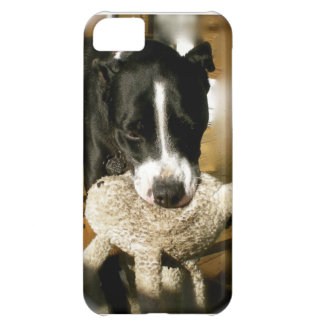 Rescue Pet Sweet Bully Breed Dog iPhone 5C Case