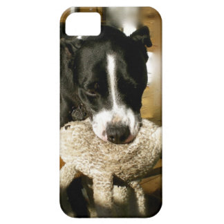 Rescue Pet Sweet Bully Breed Dog iPhone SE/5/5s Case