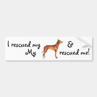 Rescue Pharaoh Hound Bumper Sticker