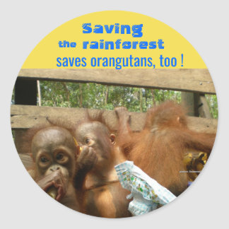 Rescue Rainforest and Baby Orangutans Classic Round Sticker