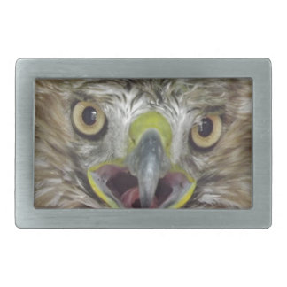 Rescued and Released Hawk Belt Buckle