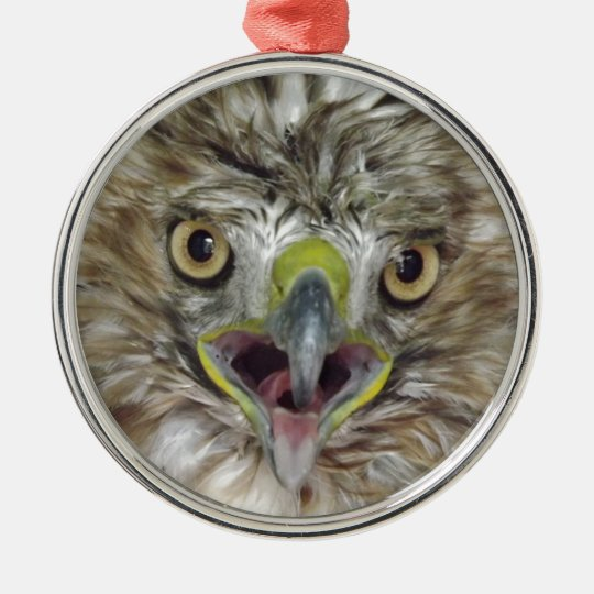 Rescued and Released Hawk Metal Ornament
