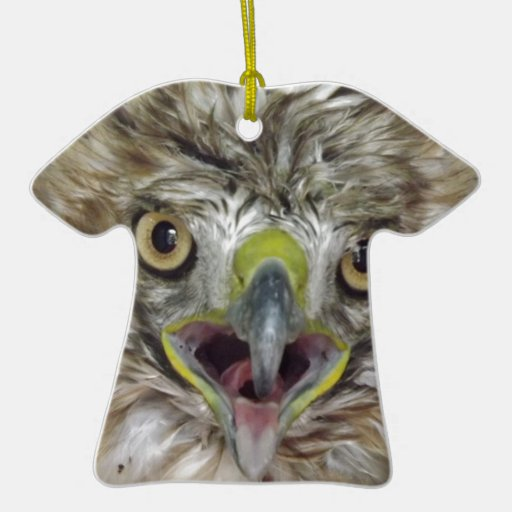 Rescued and Released Hawk Double-Sided T-Shirt Ceramic Christmas Ornament