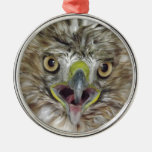 Rescued and Released Hawk Round Metal Christmas Ornament