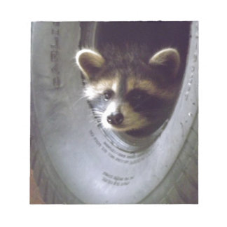 rescued and released raccoon notepad