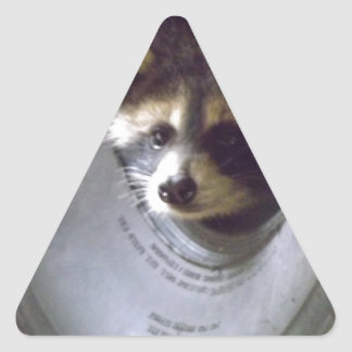 rescued and released raccoon triangle sticker