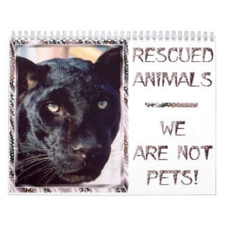 Rescued Animals - We are Not Pets Wall Calendar