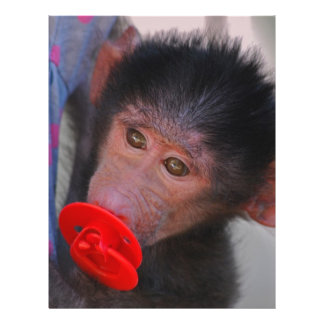 Rescued Baby Ape with a dummy Flyer