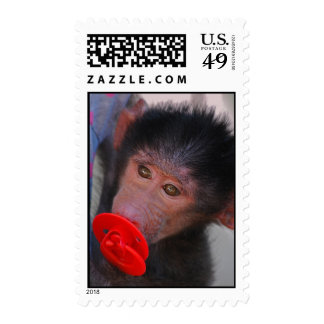 Rescued Baby Ape with a dummy Postage