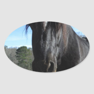 Rescued Black Draft Horse Oval Sticker