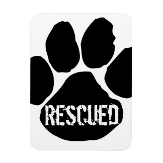 Rescued Car Magnet - Small