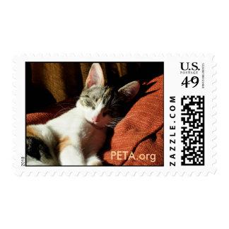 Rescued Cat Stamp