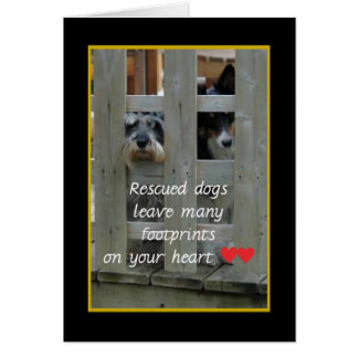 Rescued Dogs Animal Notecards Card