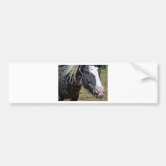 RESCUED HORSE BUMPER STICKER