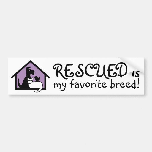 Rescued is my favorite breed! bumper stickers