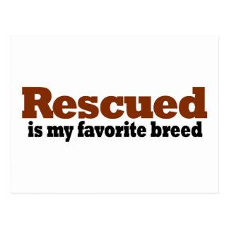 Rescued Is My Favorite Breed Postcard