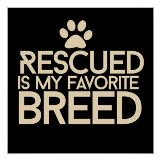 Rescued is my favorite breed poster