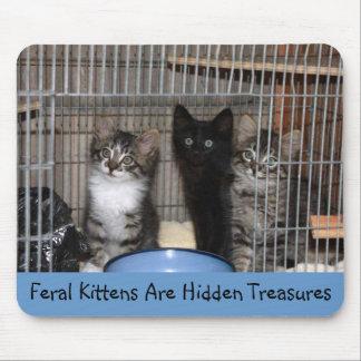 Rescued Kitten Treasures Mousepad