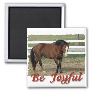Rescued Morgan Horse:  Be Joyful 2 Inch Square Magnet