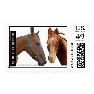 Rescued Wyatt and Buckeye Stamp