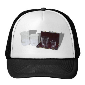 ResearchBusiness091210 Trucker Hat