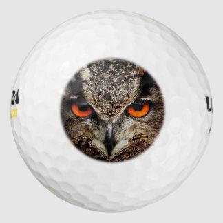 researchers looking owl golf balls