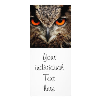 researchers looking owl personalized rack card