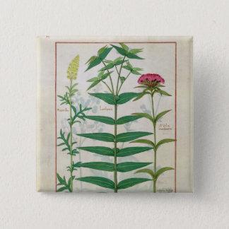 Reseda, Euphorbia and Dianthus Pinback Button