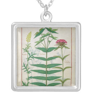 Reseda, Euphorbia and Dianthus Silver Plated Necklace