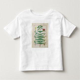 Reseda, Euphorbia and Dianthus Toddler T-shirt