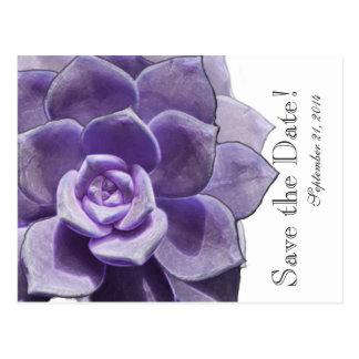 Reserva acodada lila translúcida del Succulent la Postal