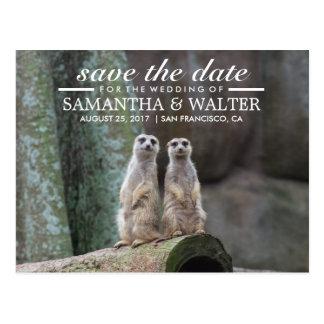 Reserva adorable de Meerkats la fecha Tarjeta Postal