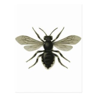 Reserva amarilla del negro de la abeja reina las postales