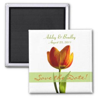 Reserva anaranjada adaptable del tulipán el imán d