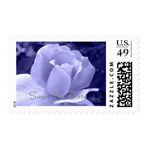 Reserva azul del rosa la fecha