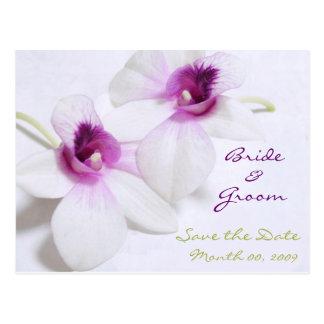 Reserva blanca de la orquídea las postales de la f