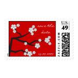 Reserva blanca de Sakuras los sellos del boda de l
