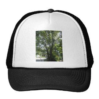 Reserva de América del verde del jardín del árbol+ Gorro De Camionero