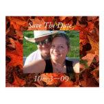 Reserva de la caída la fecha tarjetas postales
