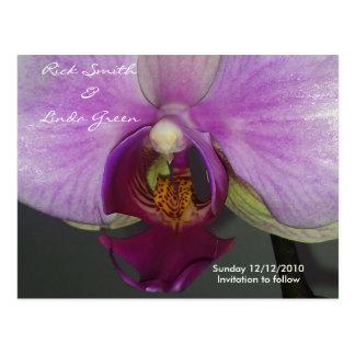 Reserva de la orquídea del primer la fecha tarjeta postal