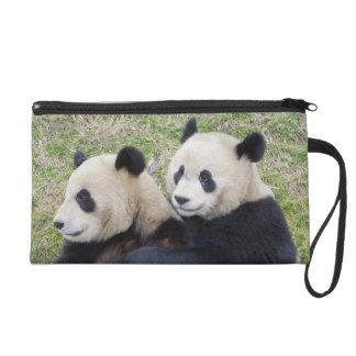 Reserva de Wolong, China, abrazo de la panda gigan