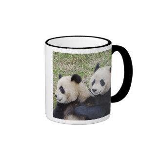 Reserva de Wolong China abrazo de la panda gigan Tazas De Café