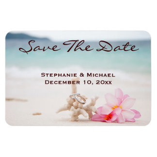 Reserva del boda de playa de los anillos de bodas imanes