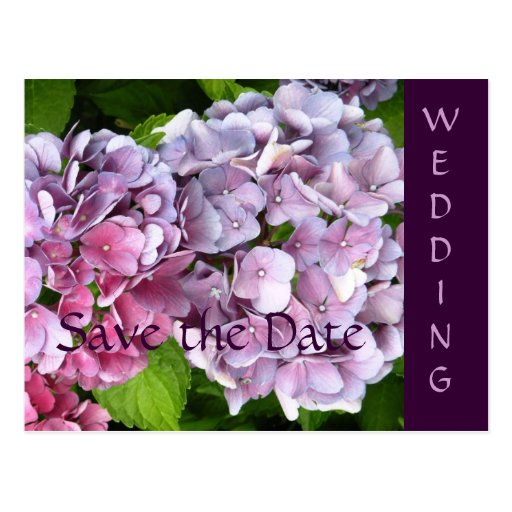 Reserva del boda del Hydrangea la postal de la fec