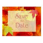 Reserva del boda del otoño la fecha, hojas del nar postal