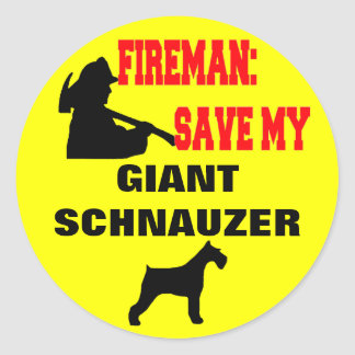 Reserva del bombero mi Schnauzer gigante Pegatina Redonda