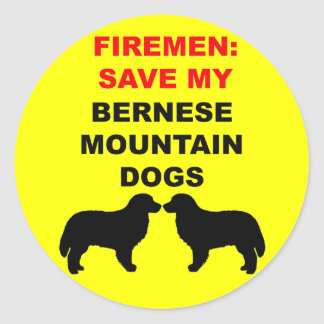 Reserva del bombero mis perros de montaña de pegatina redonda