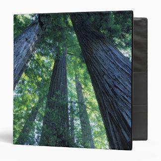 """Reserva del estado de maderas de Montgomery, Calif Carpeta 1 1/2"""""""