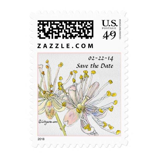 Reserva del flor del tilo la fecha que casa franqueo